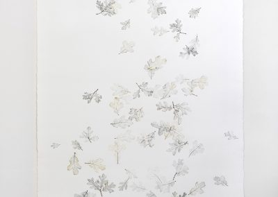 Linda Ridgway, But let spotted leaves fall as they fall #1, 2019, Graphite and colored pencil on paper, 72h x 42w in
