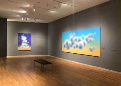 Ted Kincaid, Installation view, Even if I Lose Everything, Georgia Museum of Art, 2019