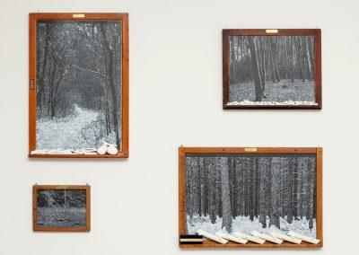 Helen Altman, Installation view, Oasis, 2019, Talley Dunn Gallery