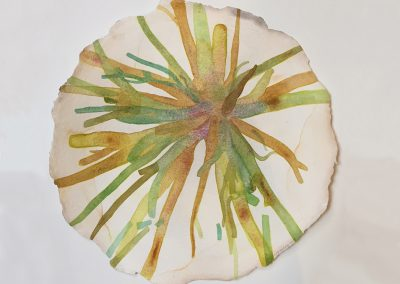 Liz Ward, Ruptured Rhizome, 2017, Watercolor on paper, 13h x 13w in