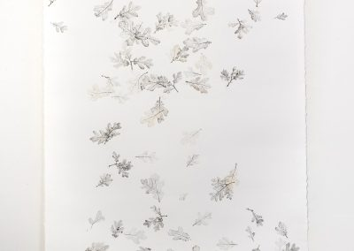 Linda Ridgway, But let spotted leaves fall as they fall #2, 2019, Graphite and colored pencil on paper, 72h x 42w in
