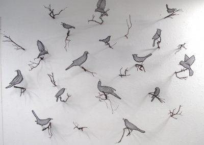Helen Altman, Installation view, Helen Altman birds, 2017