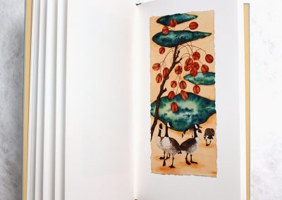 Melissa Miller, A Bestiary, Slipcased Edition, 2007, Book