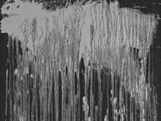 Wolf Waterfall-blurb