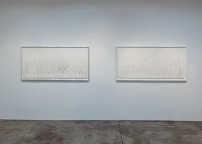 Linda Ridgway, Installation view, Cover Up, Grassland, and Shakespeare, 2019, Talley Dunn Gallery