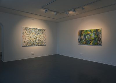 Sam Reveles, Installation view, Poulaphouca: New Paintings & Works on Paper, 2019. Butler Gallery
