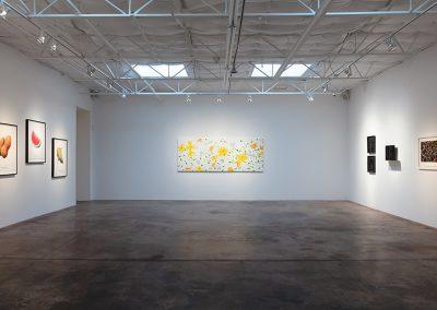 Installation view, Fresh, 2019, Talley Dunn Gallery