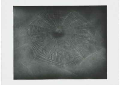 Vija Celmins, Untitled (Web 3), 2002, 1-color aquatint/drypoint, 21h x 24 1/2w in