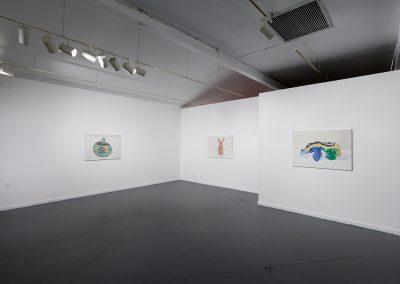 Francesca Fuchs, Installation view, Something, 2018, Talley Dunn Gallery
