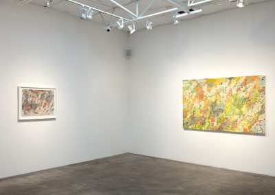 Sam Reveles, Installation view, The Impossibility of Measuring Our Connectivity: New Paintings and Drawings, 2018, Talley Dunn Gallery