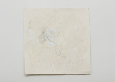 Joseph Havel, Thistle 3, 2015, Graphite, oil paint and oil stick on paper, 36h x 36w in