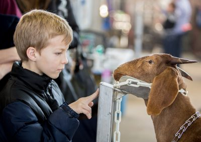 Rima Canaan Lee, Boy and Goat, 2014, Archival pigment print, 24 1/2h x 34 1/2w in