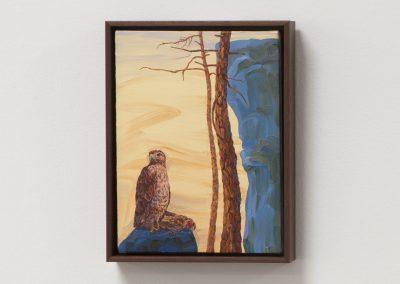 Melissa Miller, Hawk