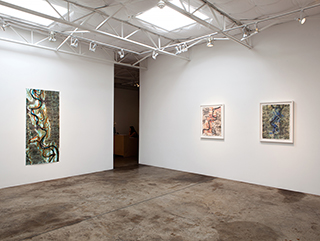 TD_june2015_30-blurbLiz Ward, Installation view, Ghosts of the Old Mississippi, 2015, Talley Dunn Gallery