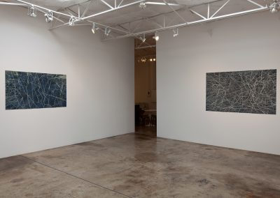 Sam Reveles, Installation view, Iarnnód: New Drawings, 2015, Talley Dunn Gallery