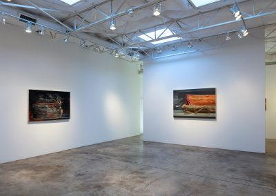 Installation View, Xiaoze Xie: New Paintings and Photographs, 2019, Talley Dunn Gallery
