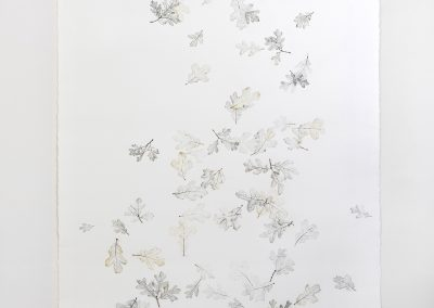 Linda Ridgway, But let spotted leaves fall as they fall #1, 2019,  Graphite and colored pencil on paper,  72h x 42w in, Photo by Teresa Rafidi