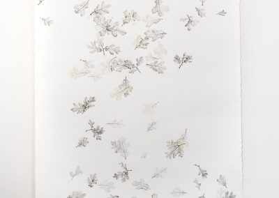 Linda Ridgway, But let spotted leaves fall as they fall #2, 2019,  Graphite and colored pencil on paper,  72h x 42w in, Photo by Teresa Rafidi