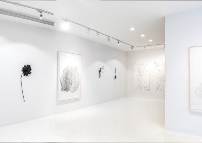 Linda Ridgway: New Works, Installation view, Talley Dunn Gallery, Photo by Teresa Rafidi