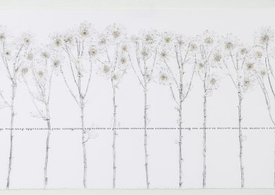 Linda Ridgway, White House, 2020,  Graphite, text and colored pencil on paper, 30h x 67w in, Photo by Teresa Rafidi