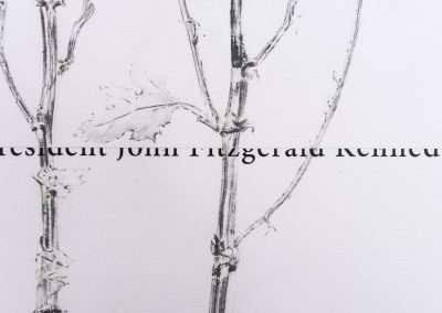 Linda Ridgway, White House, Detail, 2020,  Graphite, text and colored pencil on paper, 30h x 67w in, Photo by Teresa Rafidi